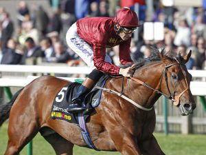 Havana Gold Winning the G3 Tattersall Somerville Stakes