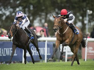 Herecomesthesun winning at Salisbury