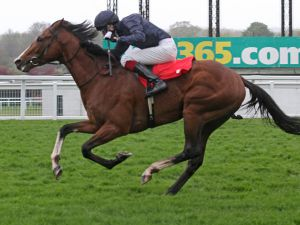 Imperial Monarch winning the G3 Sandown Classic Trial