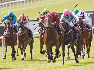 Just The Judge winning the Irish 1,000 Guineas.  (Picture copyright Trevor Jones)