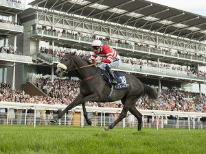 Mecca's Angel Winning the G1 Nunthorpe Stakes (Copyright Edward Whitaker)