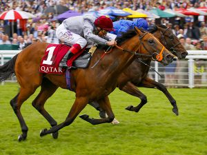 Mehmas Winning the G2 Richmond Stakes