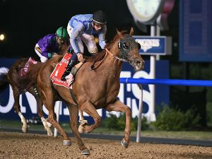 Prince Bishop Winning the G1 Dubai World Cup