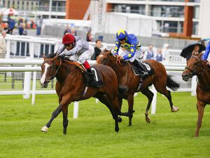 Qaroun Strides Clear to Win