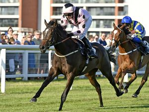 Room To Improve winning at Newbury