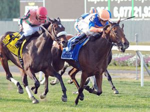 Samitar winning the Grade 1 Garden City Stakes
