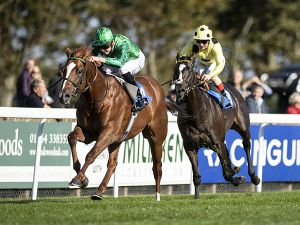 Senza Limiti winning at Salisbury