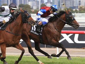 Spillway winning the G1 Australian Cup. His dam Flower Market was bought for 37,000 gns at the July Sale.