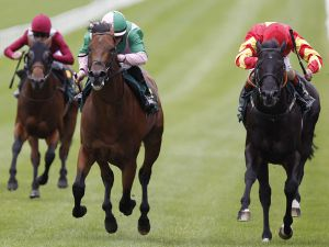 Sudirman (Centre) holds off Big Time to win the G1 Phoenix Stakes