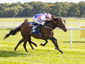 Tales of Grimm winning at Newbury in 2013