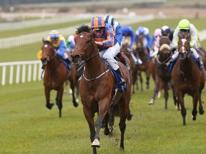 The Warrior (copyright Racing Post)