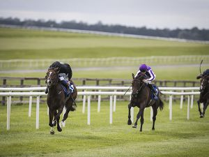 Trethias winning at The Curragh