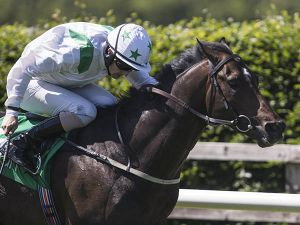 Understate winning at Navan