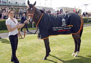 Wahylah following her win