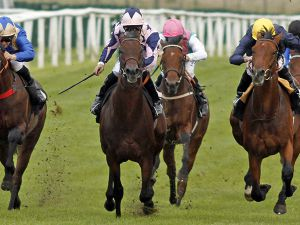 Warrior's Spirit (Centre) Winning at Newbury
