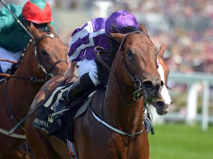 Waterloo Bridge Winning the Group 2 Norfolk Stakes
