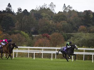 White Satin Dancer winning at Leopardstown